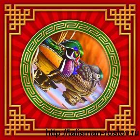 Утки-мандаринки, денежные салфетки